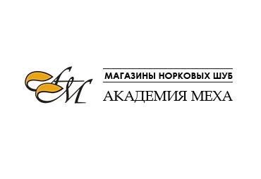 Академия меха